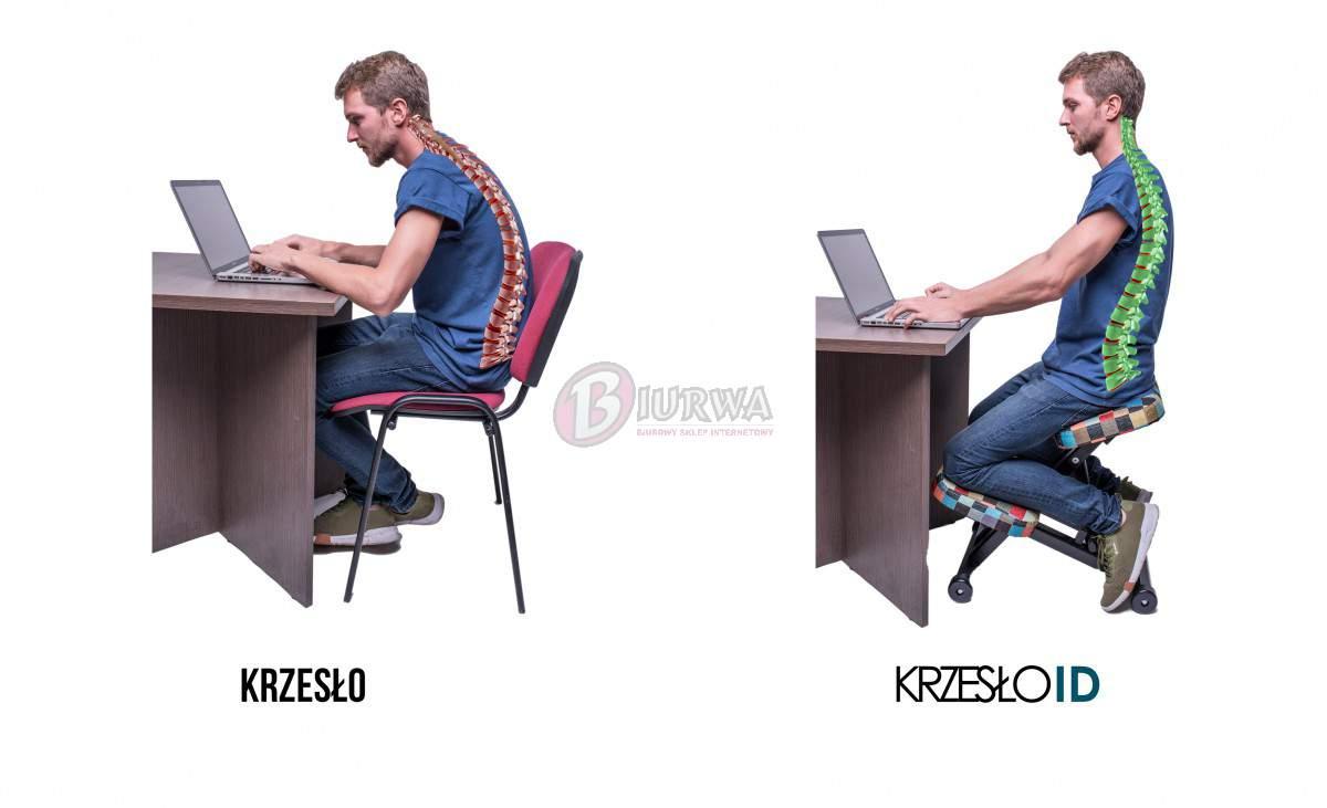 Krzesło Biurowe Ergonomiczne Id